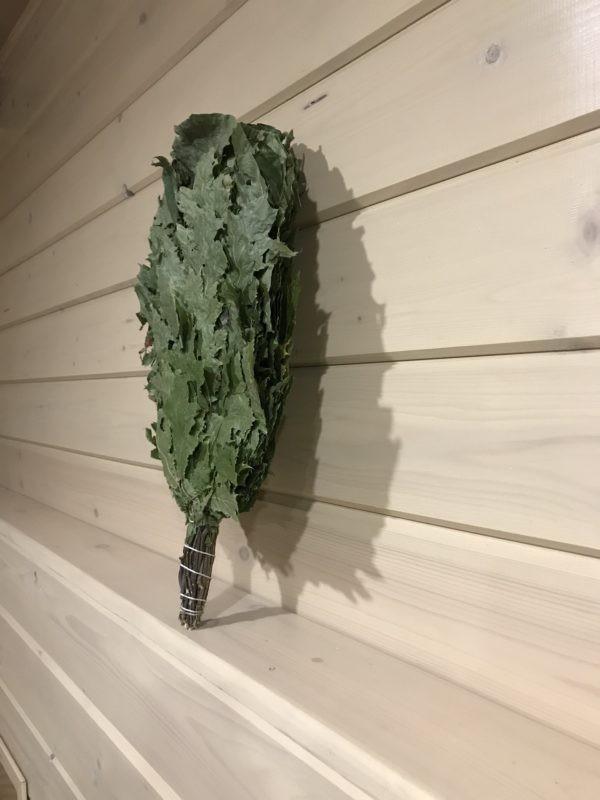 Веник из канадского дуба
